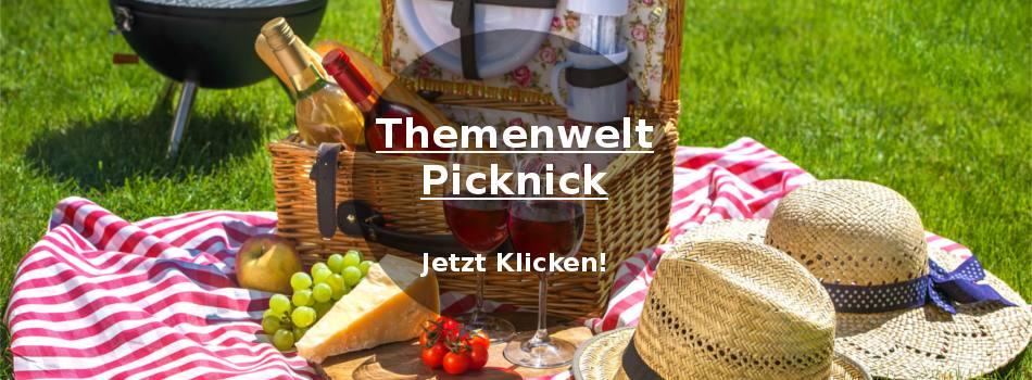 Alles was man für ein Picknick braucht!