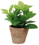 6 Stück Esschert Design Kunststoffpflanze Minze im Topf, Größe S, ca. 8,6 cm x 8,6 cm x 15 cm