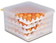 APS 10 Lagen zu Eier-Box passend zu Artikel Nr. 82419