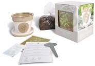 Esschert Design Anzucht-Set Minze, bestehend aus: Saatgut und Blumenerde inkl. Raku-Blumentopf, Untersetzer und Pflanzschild