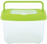 Esschert Design Insektendose aus Kunststoff, 18,3 x 11 x 13 cm, Insektenbox mit Transportgriff, durchsichtig zum Beobachten, mit grünem Deckel