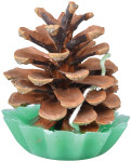 Esschert Design Kieferzapfen Anzünder, aus Tannenzapfen-Wachs, 6,3 x 6,3 x 7,9 cm