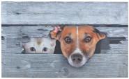 Esschert Design Türmatte Kuckuck! Hund & Katze, 75 x 45,5 x 0,2 cm, aus Polyester, Fuß Abstreifer