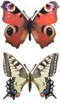 Esschert Design Wanddekoration Schmetterling, Design sortiert, 25 x 0,2 x 20 cm, Gartendekoration