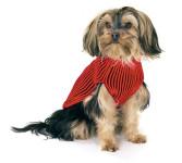 Karlie Sunny Hundepullover mit Regencape
