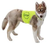 Kerbl Sicherheitsweste für Hunde, Rückenlänge 25 cm, 40 - 50 cm