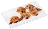"""Kesper Dekor-Frühstücksbrettchen """"Puppies"""", aus Melamin, 23,5 x 14 x 0,4 cm, mit 4 rutschfesten Füßchen, mit Welpenmotiv"""