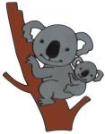 MagicGel Fensterbilder - Koalabär (21 x 27 cm), Fensterdeko für das Basteln mit Kindern