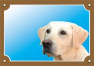 Nobby Warntafel Labrador, 1 Stück