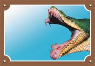 Nobby Warntafel Schlange Kobra, 1 Stück