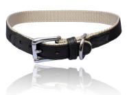 Nylon Halsband, mit Elchleder dubliert, Farbe schwarz/creme, für bis zu 60 cm Halsumfang