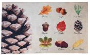 Rivanto® Türmatte Baumsammlung aus Polyester/Kunststoff, 75 x 45,4 x 0,3 cm, Aufdruck von 9 verschied. Baumarten, , Türvorleger, Fußabstreifer