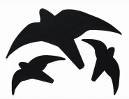 SCHWEGLER Greifvogelsilhouette 3-teilig, selbstklebende, hochwertige Folie