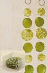 Zimmergirlande, Dekogirlande Capiz aus runden Elementen, in grün, sortiert, 1 Stück, Länge ca. 180 cm