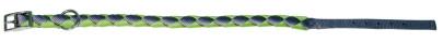 Hunde Halsband ARIZONA, 15 mm / 49 cm, apfelgrü...