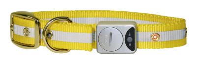 Flash & Reflex Hunde Halsband gelb, 25 mm / 35 ...