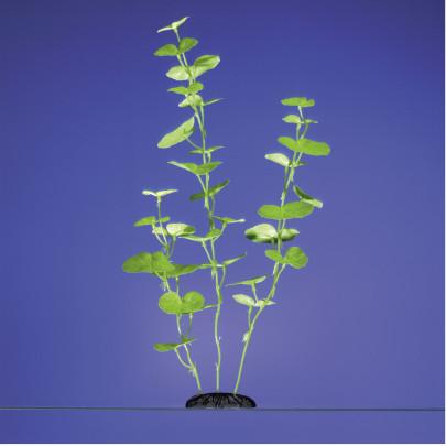 Karlie Aquarium Pflanze Hydrocotyle 20 cm