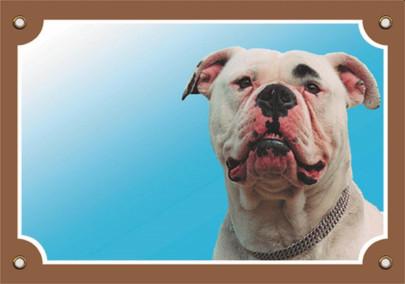 Nobby Warntafel American Bulldog, 1 Stück