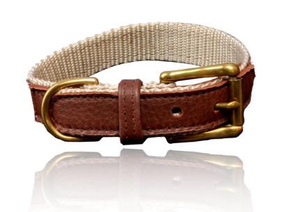 Nylon Halsband, mit Elchleder dubliert, Farbe schoko/creme, für bis zu 45 cm Halsumfang
