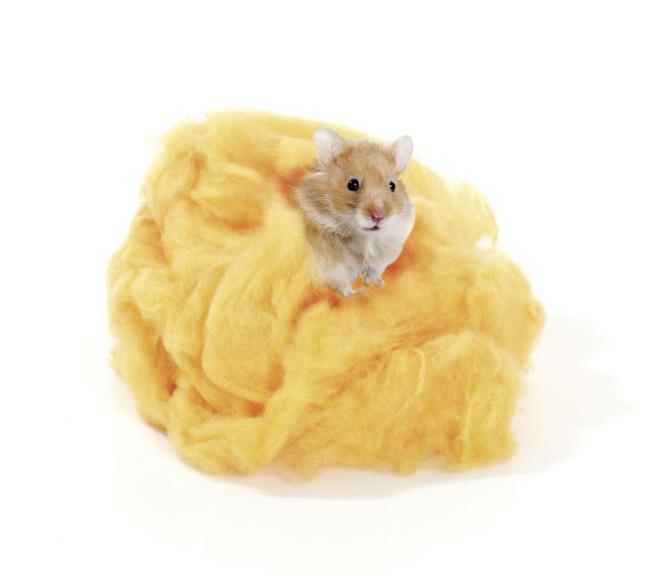 Karlie Snuggle Nest Hamsterwatte